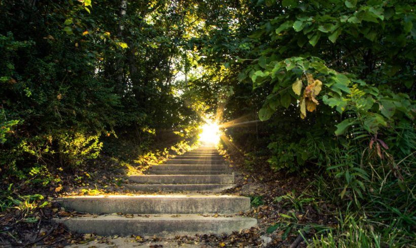 The Business of Wellness – The Path to a Healthy Future
